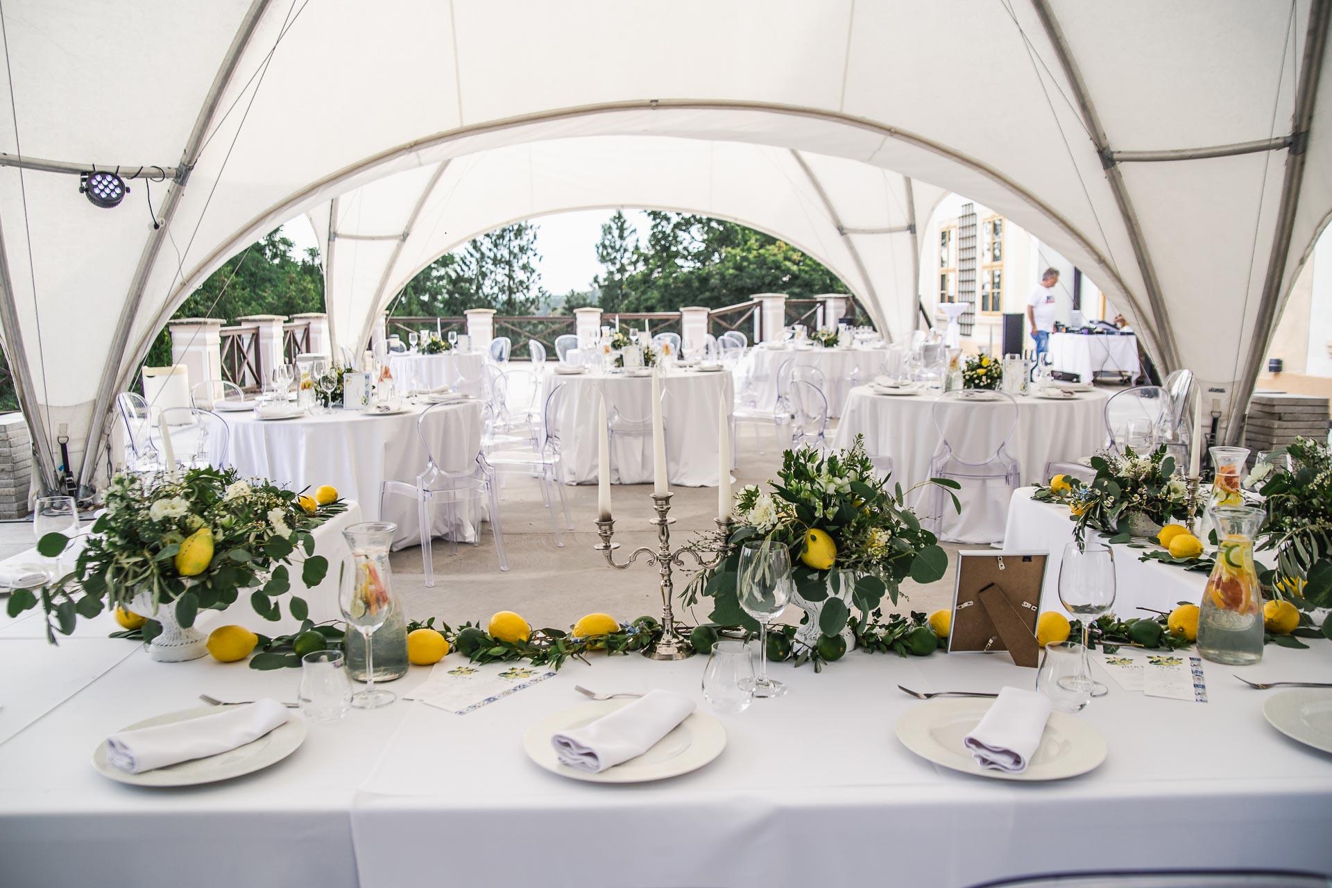 svatební-fotograf-zámek-Loučeň-svatební-video-zámek-Loučeň-4281