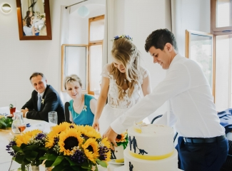svatební fotograf Lysá nad Labem,  svatební video Lysá na Labem, svatba v zámeckém parku-280