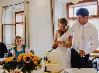 svatební fotograf Lysá nad Labem,  svatební video Lysá na Labem, svatba v zámeckém parku-281