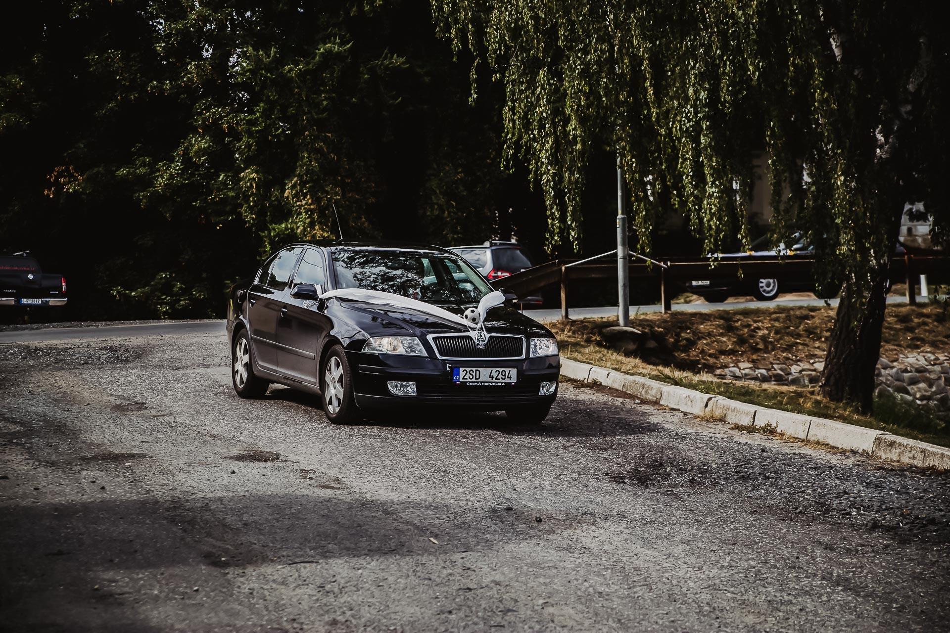 svatební fotograf Lysá nad Labem,  svatební video Lysá na Labem, svatba v zámeckém parku-231