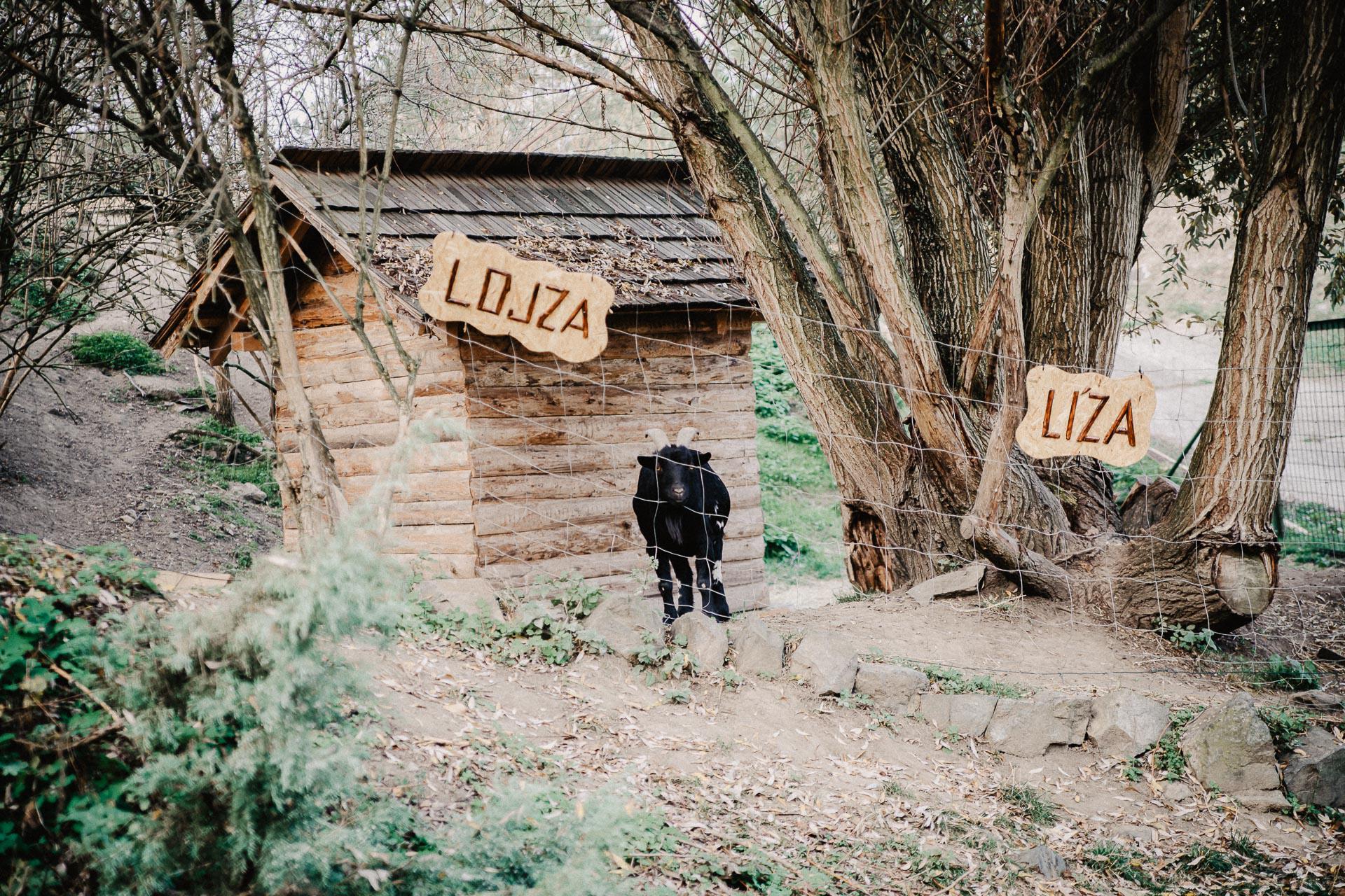 svatební-fotograf-resort-Svět-Užice-svatební-foto-Praha-fotograf-na-svatbu-0774