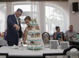 svatební fotograf hotel Ostrov Nymburk, svatební video-336