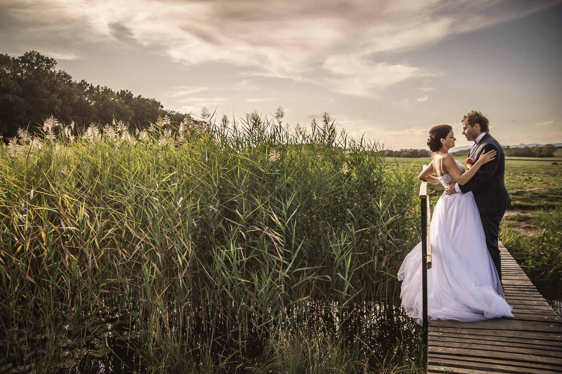 svatební-fotografie-Říp-svatební-video-ŘÍP-svatební-fotograf-ŘÍP-svatba-Mělník-svatba-Neratovice-fotograf-na-savtbu-kameraman-na-svatbu-377