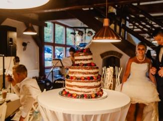 svatební fotograf zámek Mníšek pod Brdy, svatba na zámku, letní nejkrásnější zámecká svatba, Bára a Ondra-143