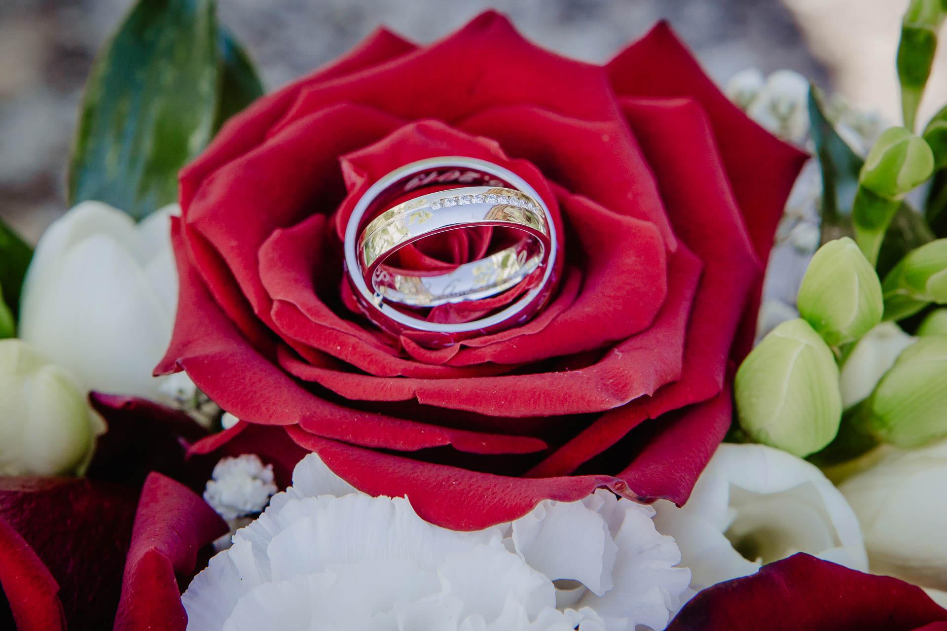 foto svatba, Havířský kostelík, Poděbrady, foto u Labe, nymburk, svatební fotograf-2381
