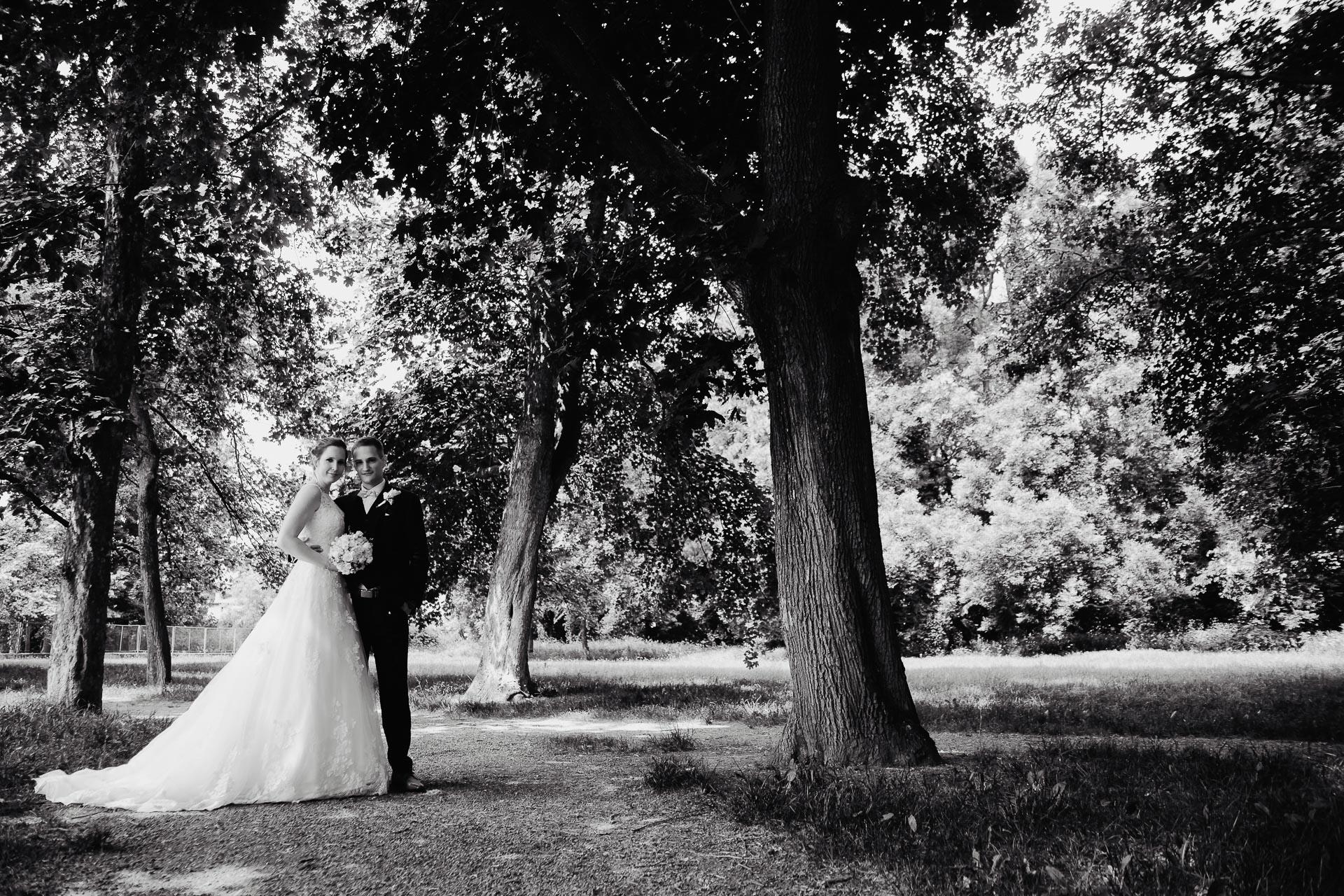 Svatební-fotograf-Čelákovice-7339