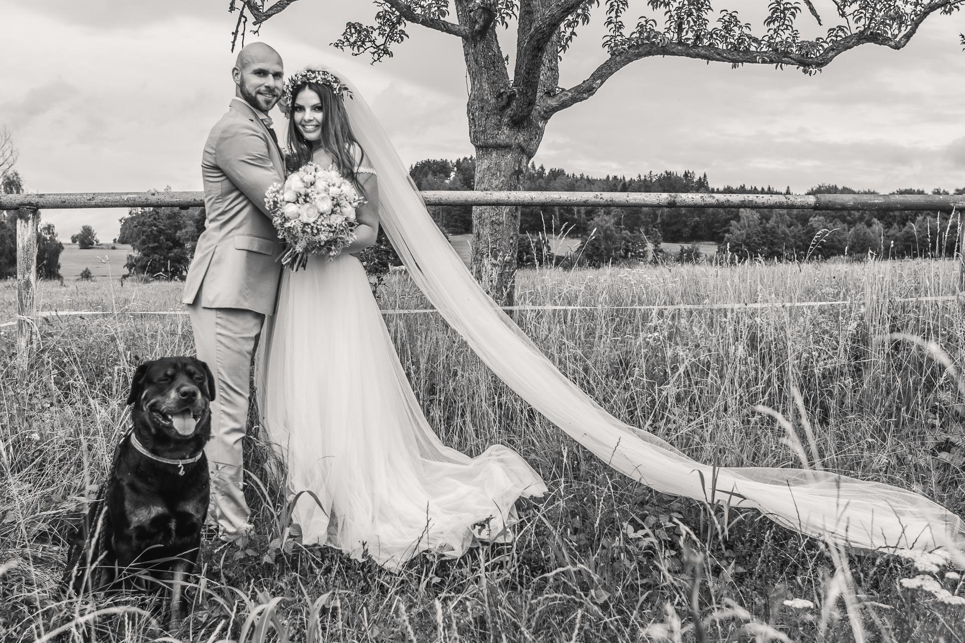Svatební-fotograf-Dvůr-Pecínov-Benešov-9565