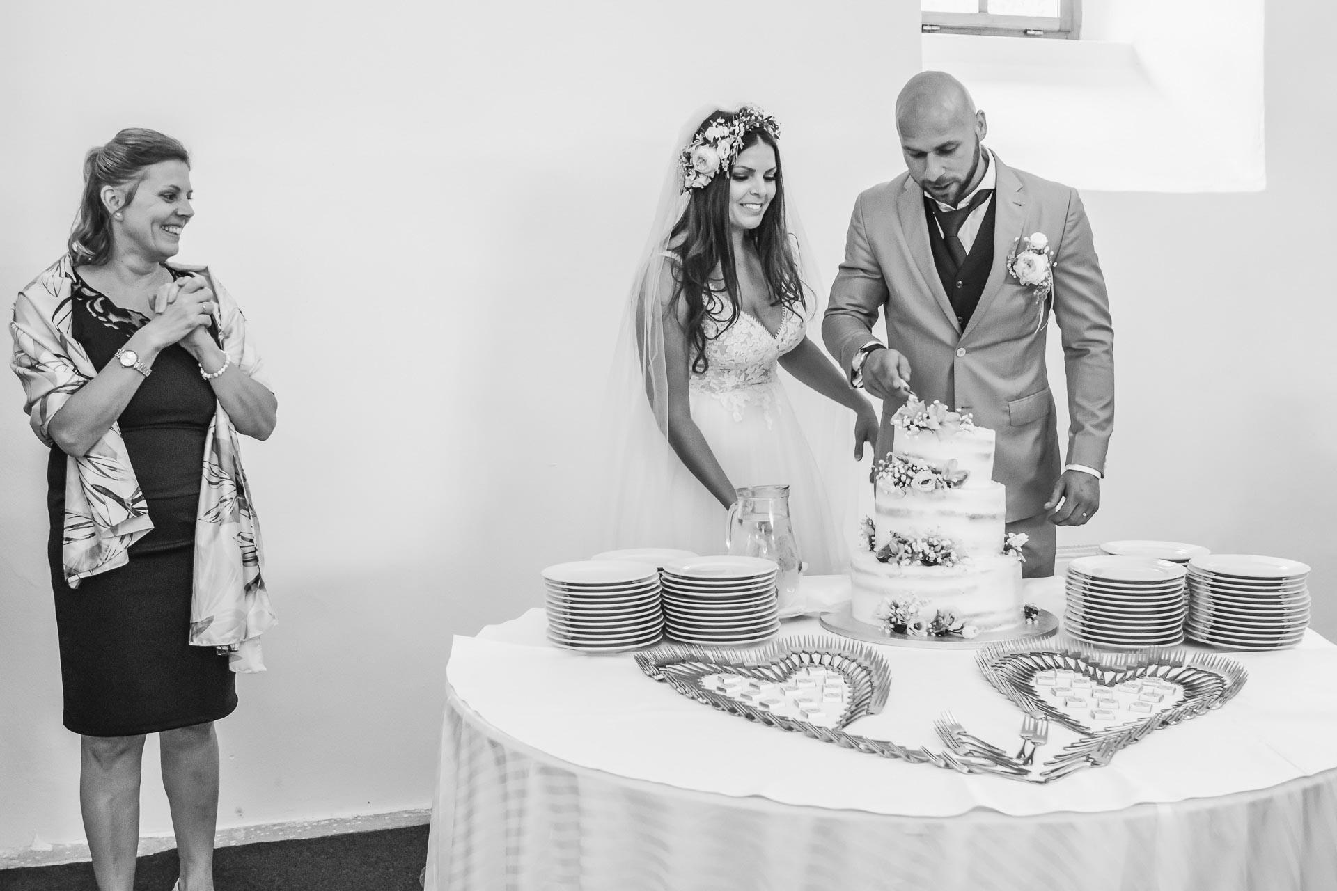 Svatební-fotograf-Dvůr-Pecínov-Benešov-9799