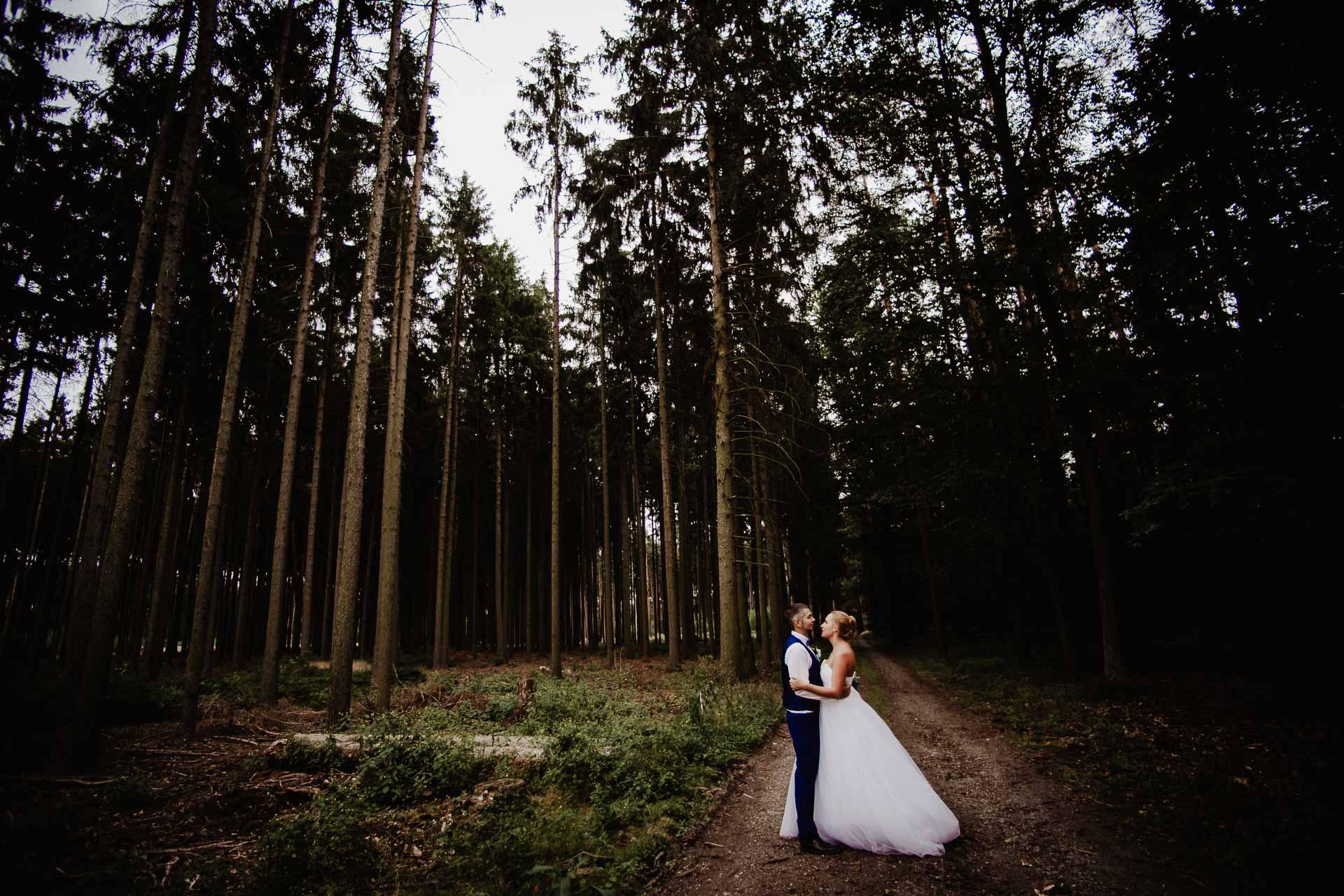 svatební-fotograf-Jívák-svatební-fotograf-Loučeň-svatební-video-Loučeň-205